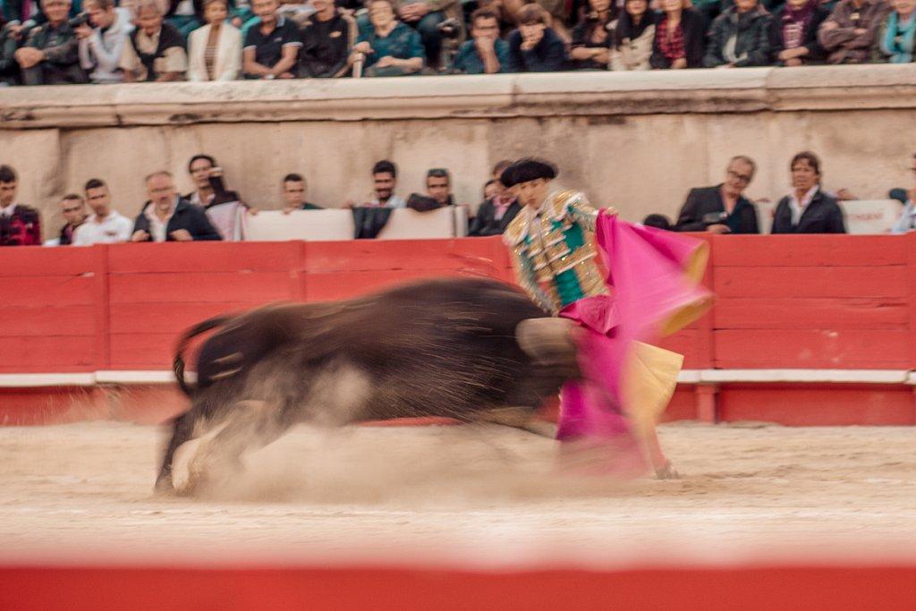 Corrida-2013-0220.jpg